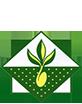 Купить семена агрофирмы МинскСортСемОвощ в Минске