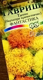 Бархатцы Фантастика Гавриш
