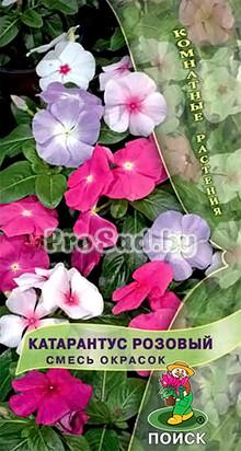 Катарантус розовый, смесь окрасок