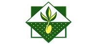 Купить семена Минсксортсемовощ