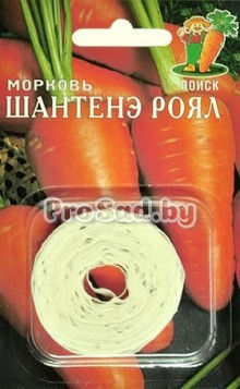Морковь Шантенэ роял (на ленте)