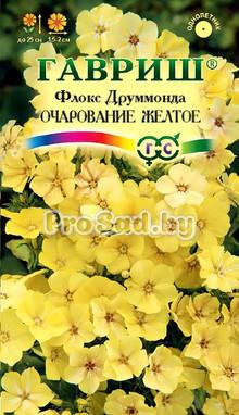 Флокс друммонда Очарование жёлтое