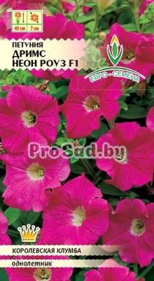 Петуния крупноцветковая F1 Дримс Неон роуз