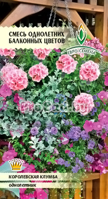 Смесь однолетних балконных цветов