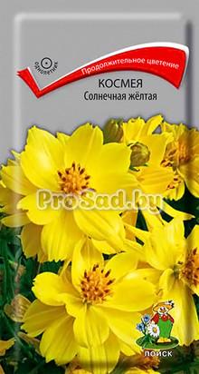 Космея Солнечная жёлтая