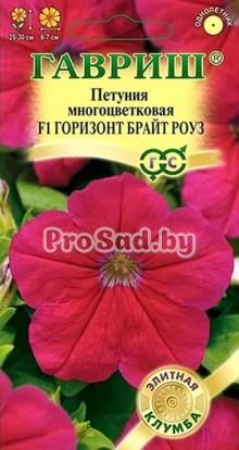 Петуния многоцветковая F1 Горизонт Брайт роуз
