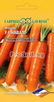 Морковь F1 Навал